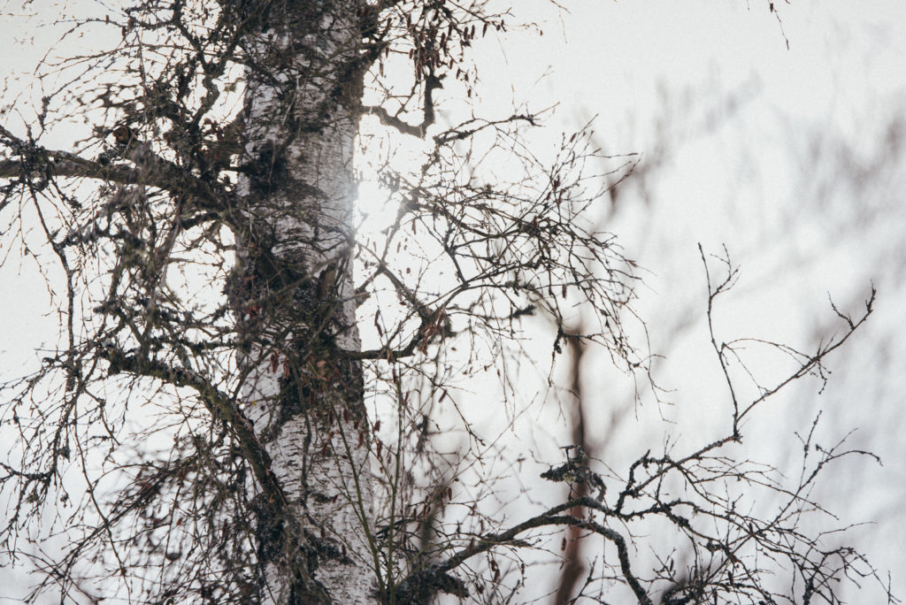 019-designparaplus-schneeshooting-heide-moor-paarshooting-fotograf-witten