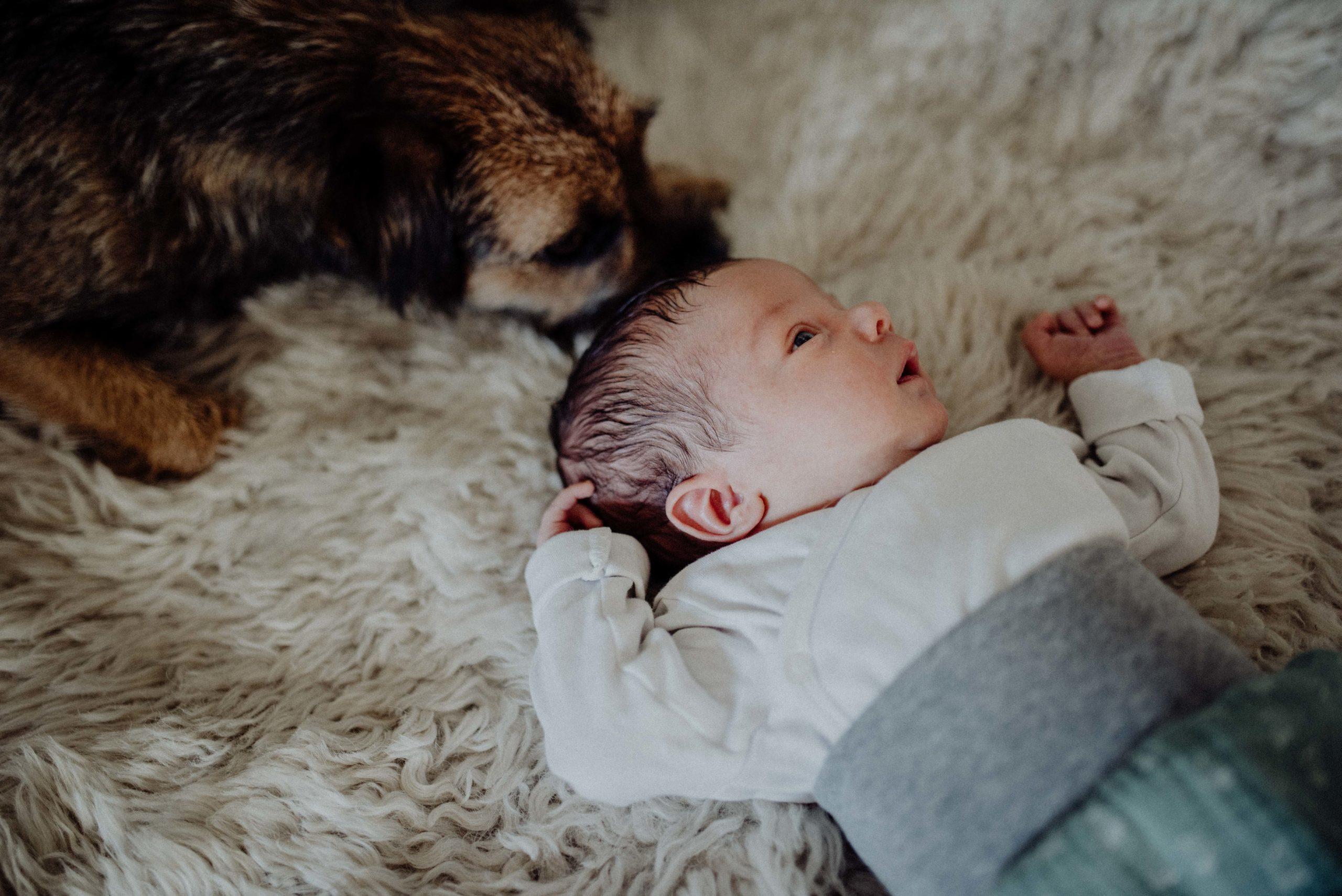 001-Witten-Homestory-Homesession-Newborn-Baby-Fotoshooting