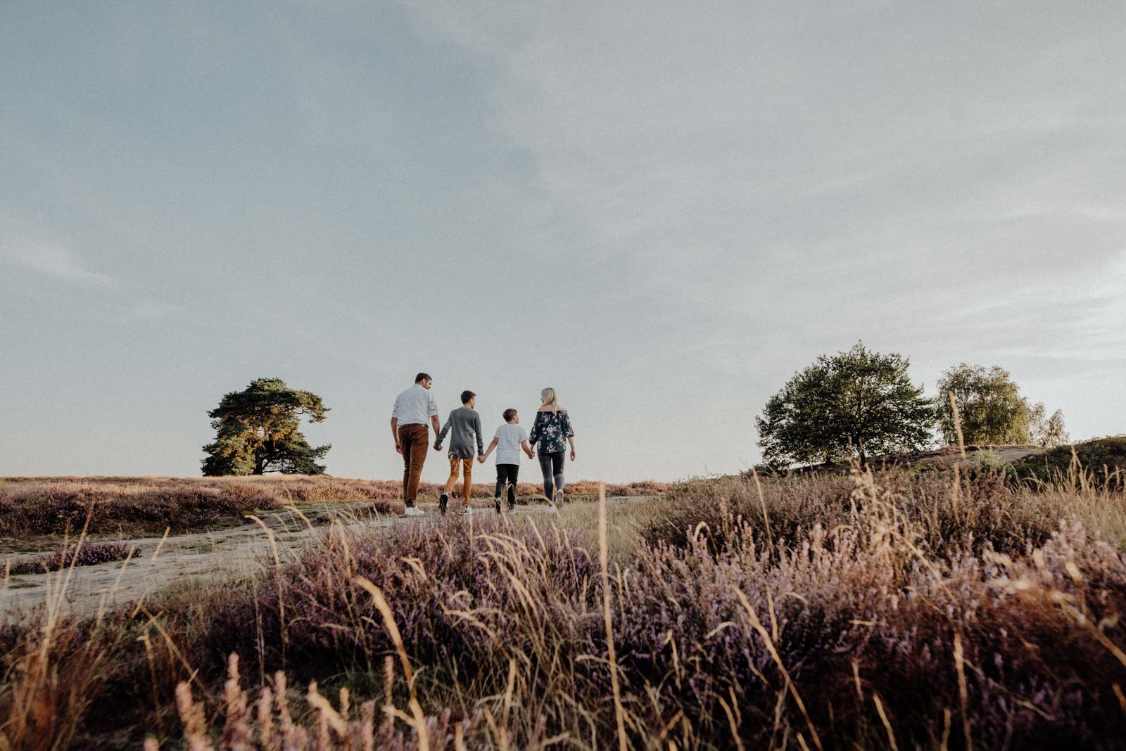 036-Familienfotos-Familienreportage-Heideshooting-natürlich-Heide